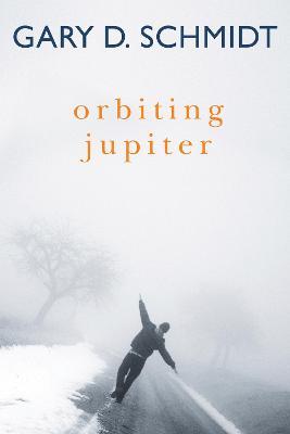 Orbiting Jupiter by Professor Gary D Schmidt