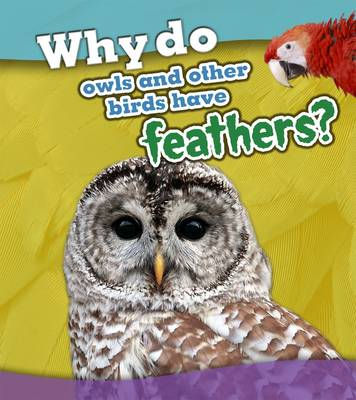 Why do owls and other birds have feathers? book