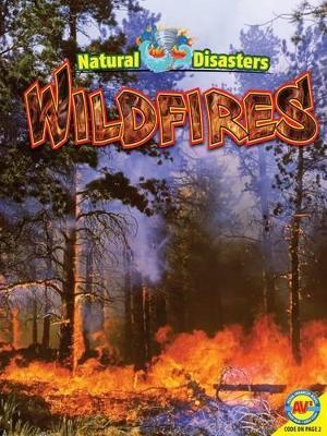 Wildfires by Pamela McDowell