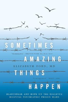 Sometimes Amazing Things Happen book