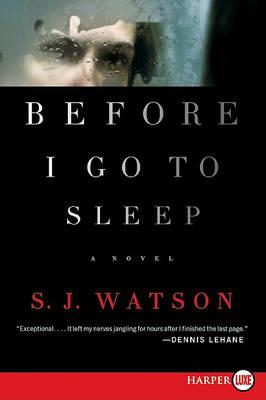 Before I Go to Sleep book