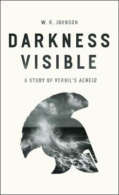 Darkness Visible by R. W. Johnson