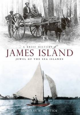 Brief History of James Island book