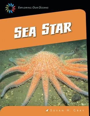 Sea Star by Susan H Gray