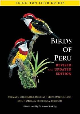Birds of Peru by Thomas S. Schulenberg