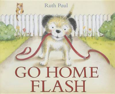 Go Home Flash by Ruth Paul