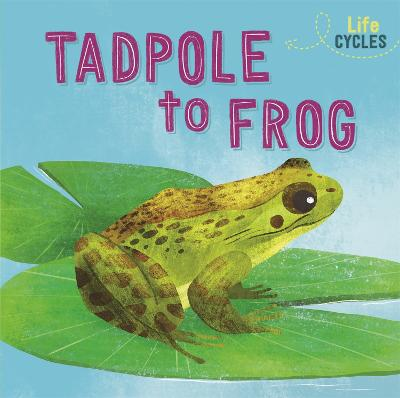 Life Cycles: From Tadpole to Frog by Rachel Tonkin
