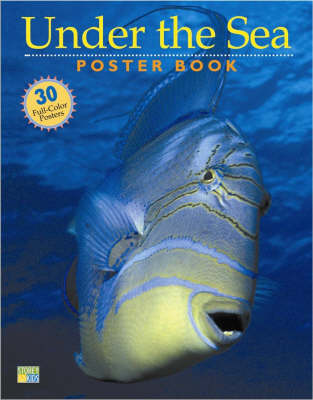Under the Sea Poster Book by Editors of Storey Publishing