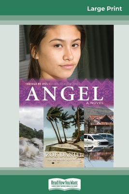 Angel: Through My Eyes - Natural Disaster Zones (16pt Large Print Edition) by Zoe Daniel