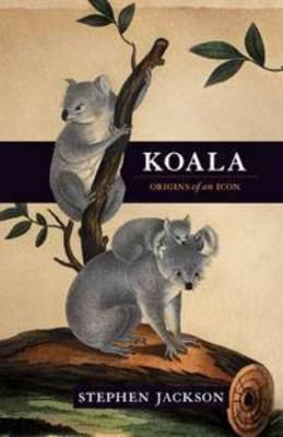 Koala by Stephen Jackson