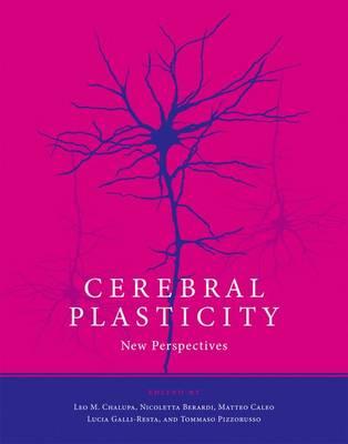 Cerebral Plasticity by Leo M. Chalupa