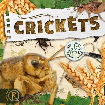 Crickets by John Wood