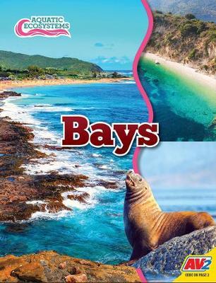 Bays by John Willis