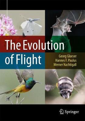 The Evolution of Flight by Georg Glaeser