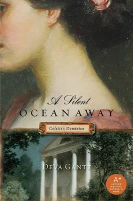 Silent Ocean Away book