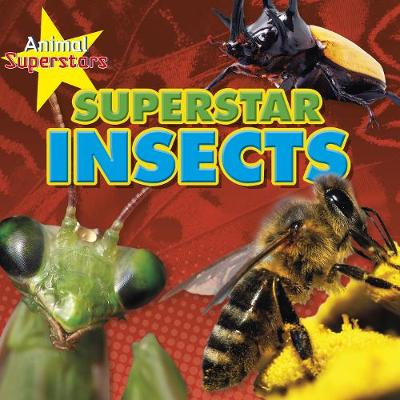 Insect Superstars by Louise Spilsbury