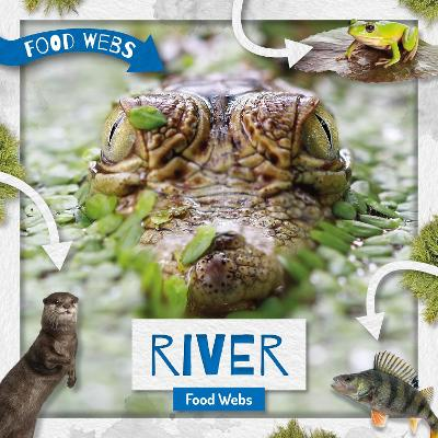 River Food Webs book