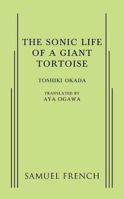 A Sonic Life of a Giant Tortoise by Toshiki Okada