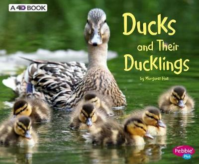 Ducks and Their Ducklings by Margaret Hall