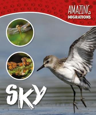 Sky book