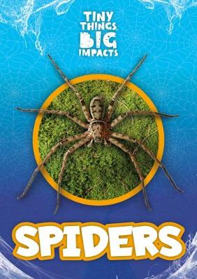 Spiders by John Wood
