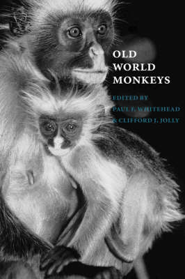 Old World Monkeys by Paul F. Whitehead