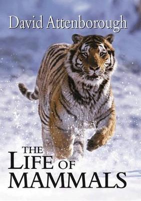 The Life of Mammals by Sir David Attenborough