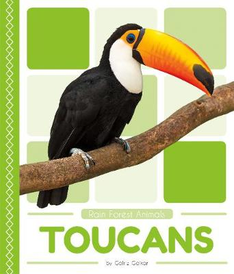 Toucans by Golriz Golkar
