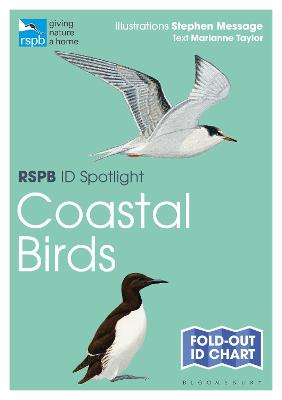 RSPB ID Spotlight - Coastal Birds by Marianne Taylor