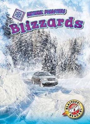 Blizzards by Betsy Rathburn
