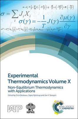 Experimental Thermodynamics Volume X by Dick Bedeaux