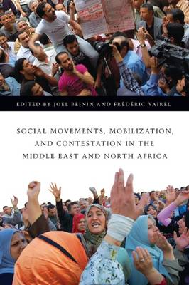 Social Movements, Mobilization, and Contestation in the Middle East and North Africa by Joel Beinin