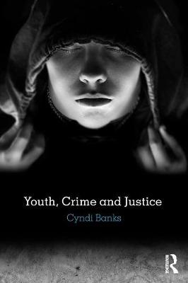 Youth, Crime and Justice book