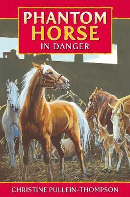 Phantom Horse by Christine Pullein-Thompson