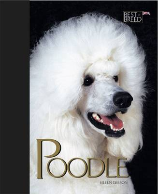 Poodle by Eileen Geeson