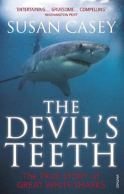 Devil's Teeth book