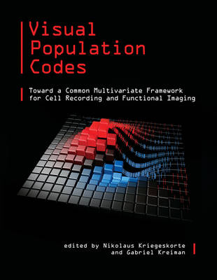 Visual Population Codes by Nikolaus Kriegeskorte