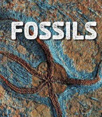 Fossils by Ava Sawyer