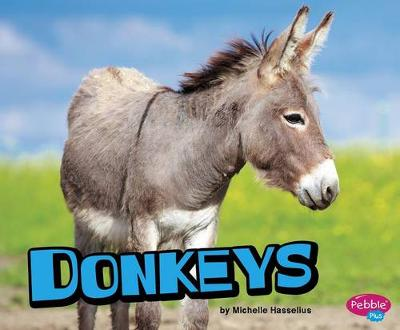 Donkeys by Michelle Hasselius