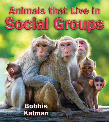 Animals That Live in Social Groups by Bobbie Kalman