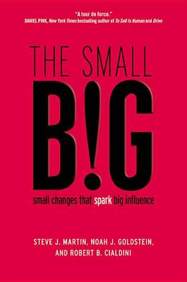 The Small Big by Steve J Martin