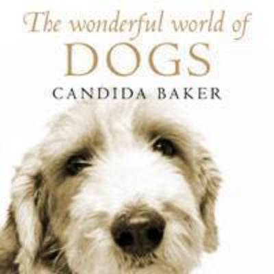The Wonderful World of Dogs by Candida Baker
