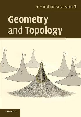 Geometry and Topology by Miles Reid | Boomerang Books