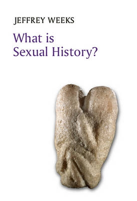 What is Sexual History? book