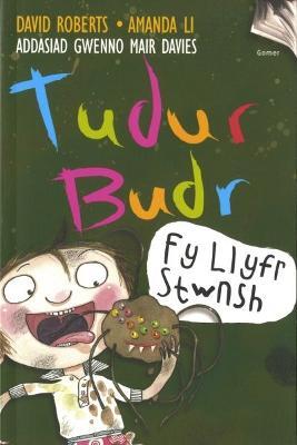 Tudur Budr: Fy Llyfr Stwnsh by David Roberts