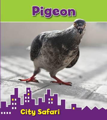 Pigeon: City Safari by Isabel Thomas