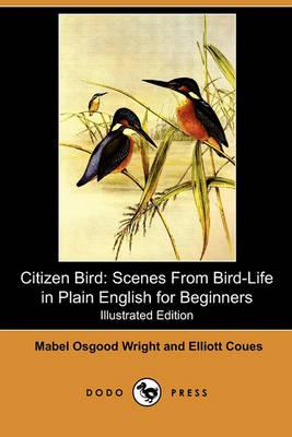 Citizen Bird by Professor Mabel Osgood Wright