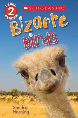 Bizarre Birds by Sandra Horning