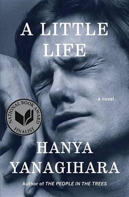 Little Life book
