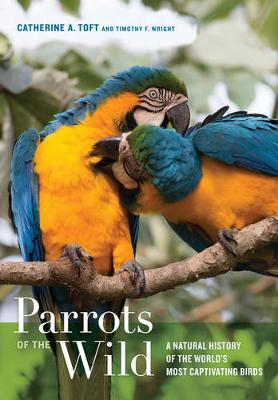 Parrots of the Wild by Catherine Ann Toft
